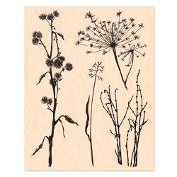 Wooden Stamp Intemporelle Sur les sentiers -Les Ateliers de Karine