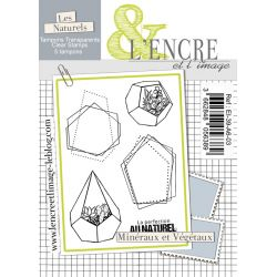 Clear Stamp - Succulents - L'Encre et l'Image
