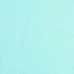 Cardstock vert d'eau 12X12