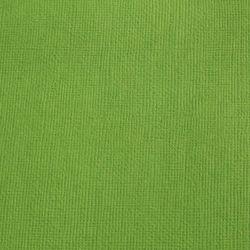 Cardstock vert mousse 12X12