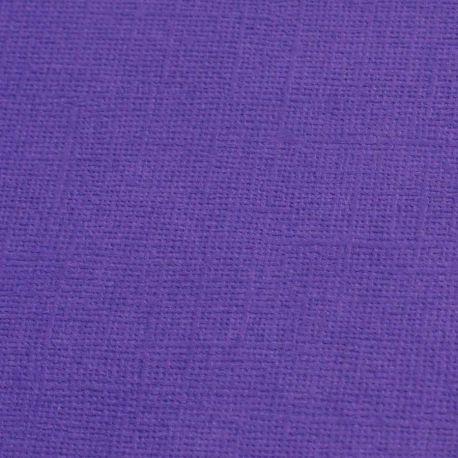 Cardstock violet myrtille 12X12