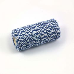 Twine bleu et blanc 100m