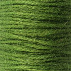 Ficelle de jute vert mousse (50M)
