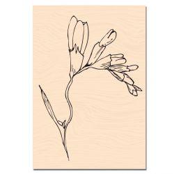 Tampon bois Fleur de Freesia