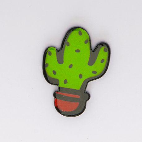 Kawai cactus