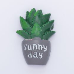 Cactus résine