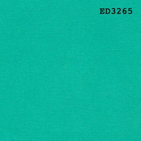 "Cardstock vert ciboulette 12X12"""