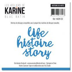 Dies Histoire de mots -Les Ateliers de Karine