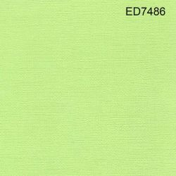 Cardstock green lime 12X12