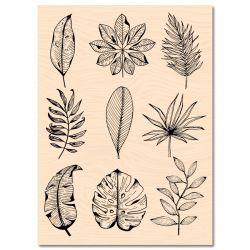 Wooden Stamp Carnet de Route Feuilles de saison -Les Ateliers de Karine