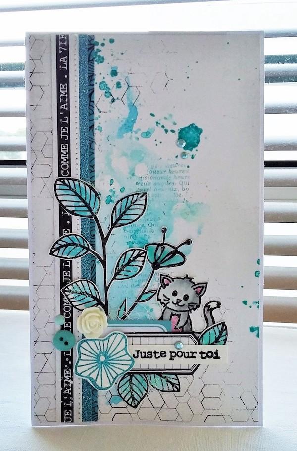 carte mimi (1)