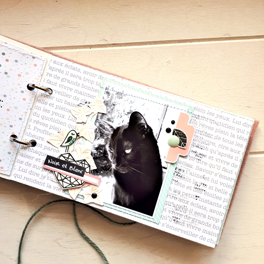 mini scrapbooking ephemeria by Cricri